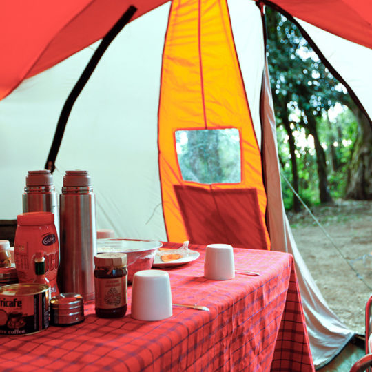 dining tent at forest camp on mount kilimanjaro